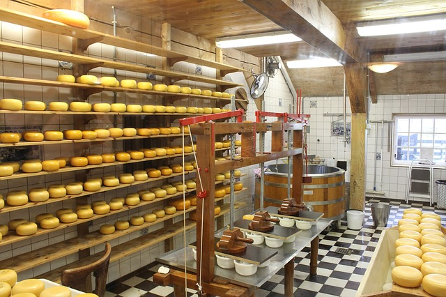 Comment fabriquer du fromage ?