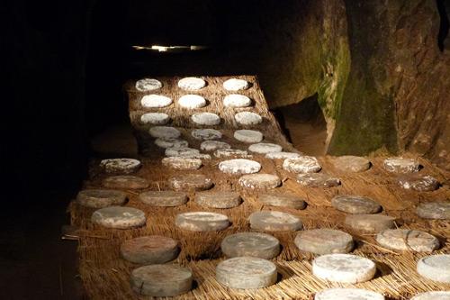Comment fabriquer du fromage ? Caillage, égouttage, moulage, salage, affinage